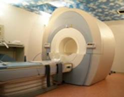 MRI イメージ